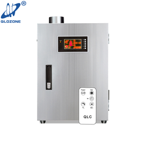 Commercial Kitchen Ozone Generator for Sale 100 G
