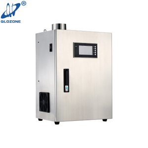 Workshop Bacterial Killing Commercial Kitchen Ozone Generator