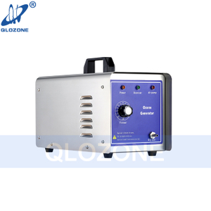 Air Household Ozone Generator Kill Bacteria in Apartment