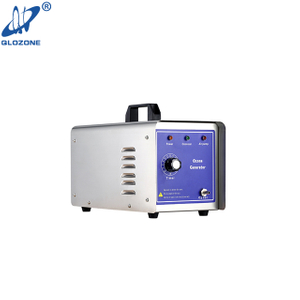 Portable Commercial Car Ozone Generator for Mold