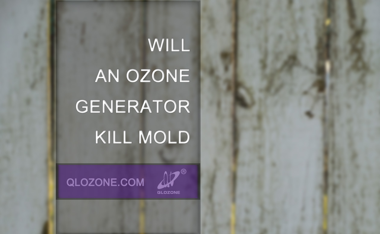 Will an ozone generator kill mold?